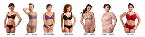 Breast Size Chart Visual Universal Cup Size You Re Doing It Wrong Sweet