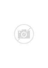 Gay porn dvd rentals