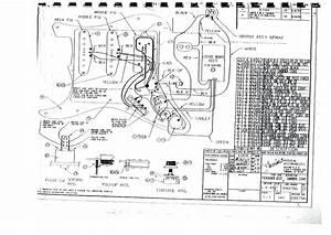 Squier Strat Wiring Schematic