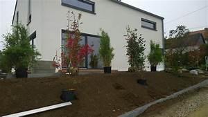Gräser Für Den Garten : garten sichtschutz plane beste von moderner sichtschutz f r den garten 20 tolle ideen moderne ~ Sanjose-hotels-ca.com Haus und Dekorationen