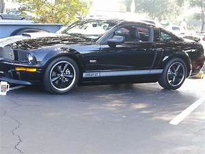 07 Shelby GT | Shelby gt, Mustang, Shelby