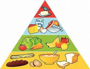 Food Pyramid Clip Art  Vector Images  U0026 Illustrations