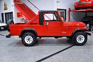 Amc 1985 Jeep Cj