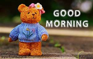 Good Morning Images in Hindi English (Shayari, Status ...