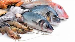 Gu U00eda Definitiva Sobre El Consumo De Pescado