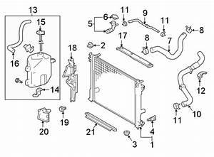 Toyota Camry Engine Coolant Bypass Hose  Radiator  Hoses