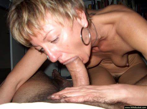 Swinger Cocks Make A Shorthair Lady