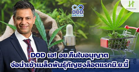 DOD Archives - Hoonsmart