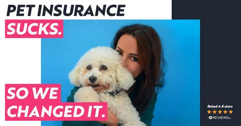 We review the best pet insurance companies based on cost, coverage best pet insurance companies. Waggel Blog - Comparing best pet insurance: Why Waggel is different