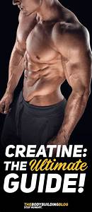 How Does Creatine Work - The Ultimate Guide  Infographic