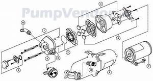 Jabsco Pump Wiring Diagram : jabsco 31670 0092 parts list ~ A.2002-acura-tl-radio.info Haus und Dekorationen