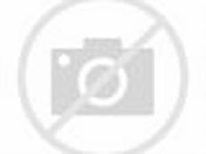ANTIFA lady gets knocked out TKO